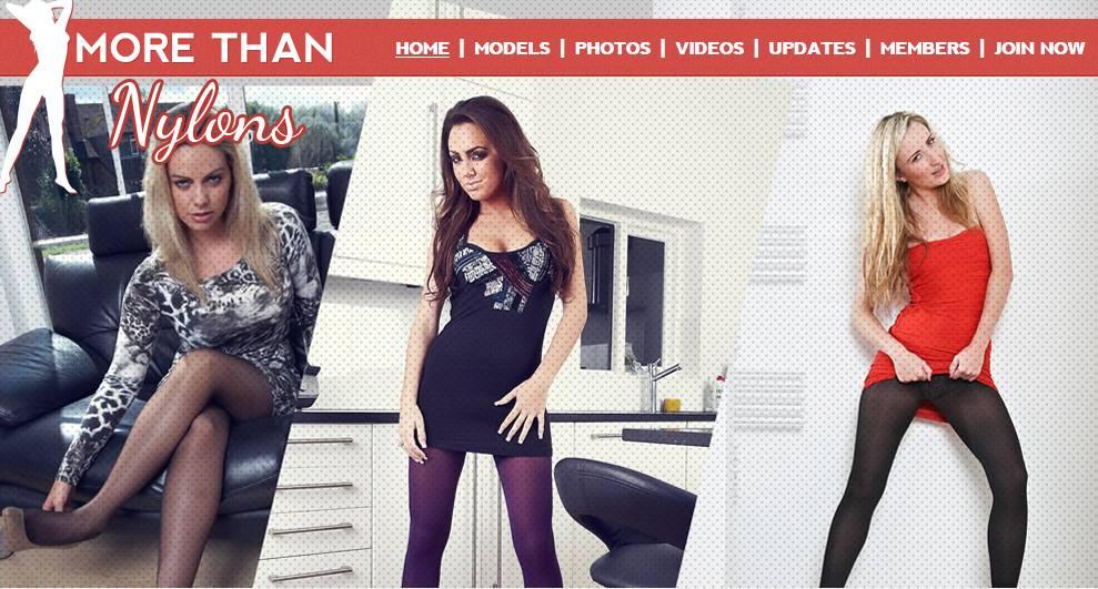 preview image pass  for morethennylons.com