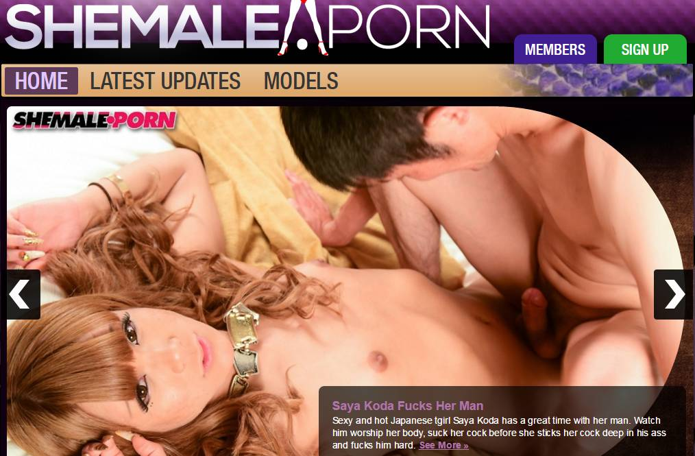 preview image pass  for shemaleporn.com